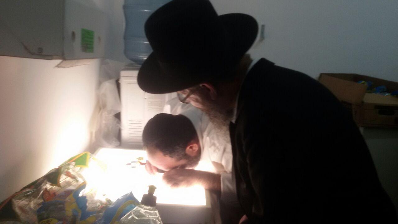 מעבדה לבדיקת חרקים הרבנות פתח תקווה (4)