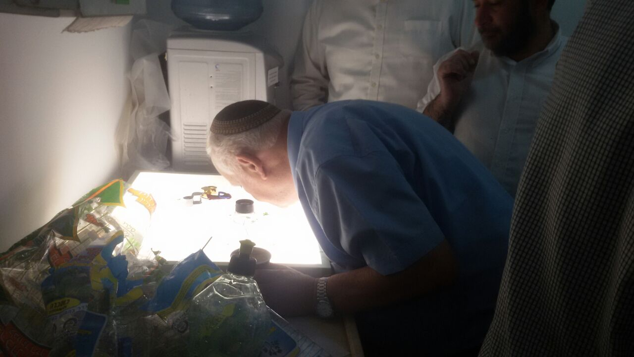 מעבדה לבדיקת חרקים הרבנות פתח תקווה (7)