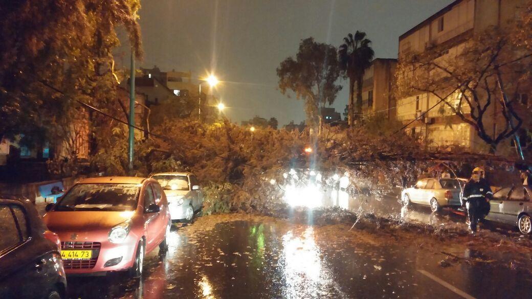 עץ קרס על רכב, פתח תקווה