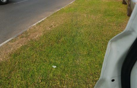 רחוב אורלוב: רוכב אופניים חשמליים נפגע קשה מפגיעת אוטובוס