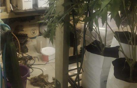 """מעבדת הידרו נחשפה בדירה ברחוב חיים עוזר בפ""""ת"""